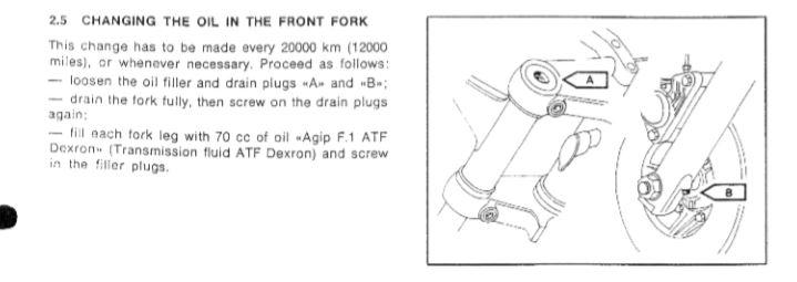 HELP NEEDED. Benelli 750 SEI Fork Rebuild.-fork-oil.jpg